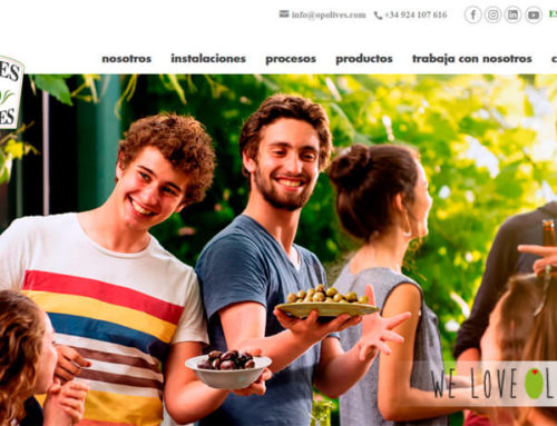 NUEVA WEB DE OLIVES AND PICKLES